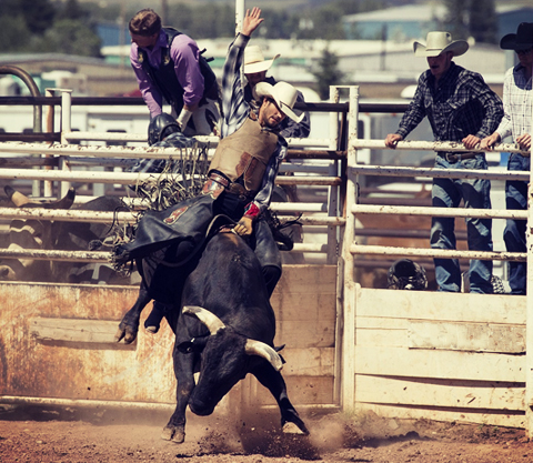 PBR Touring Pro Bull Riding